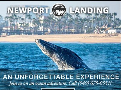Newport Landing - 2 Passes for Whale Watchi...