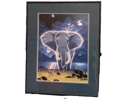 Framed Print ''Unknown'' Animals in Africa by Chimme