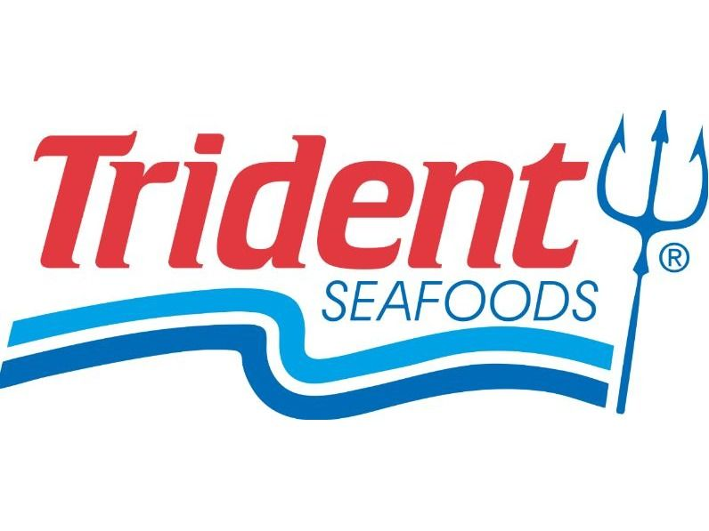 10-LBS Frozen Salmon Patties by Trident Seafoods Cor...