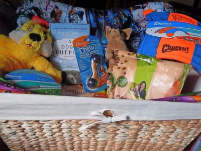 I Woof You Pet Gift Basket