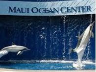 Two Journey Passes to Maui Ocean Center (One Day)