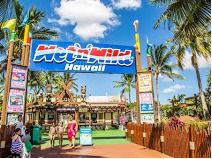 Wet N Wild Hawaii Admission Tickets for Four (4)