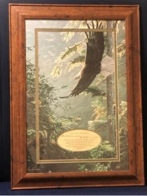 Framed Eagle Art Print