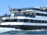 Harbor Cruise or Whale Watching....which to chose....