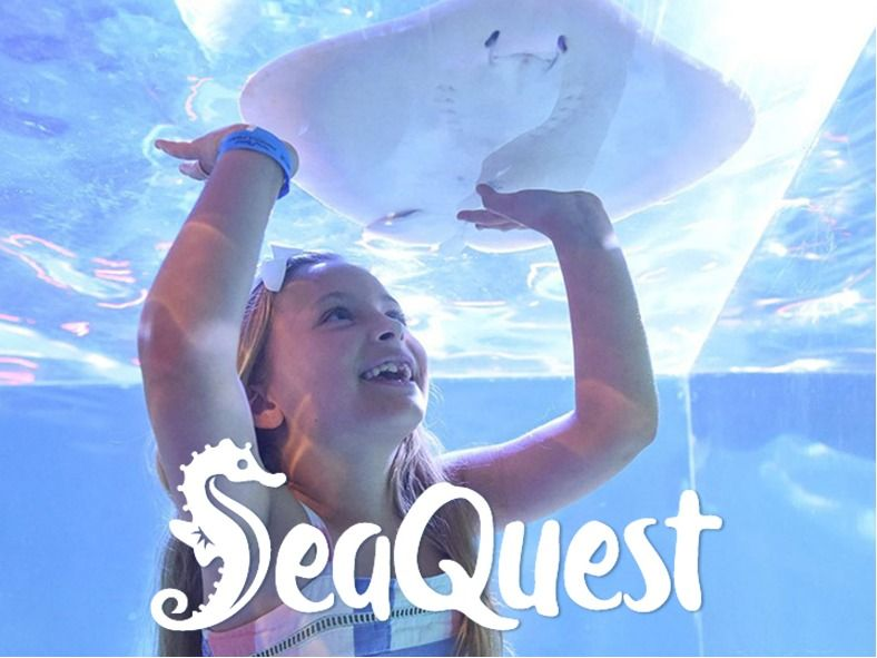 4 Annual Passports to SeaQuest Roseville