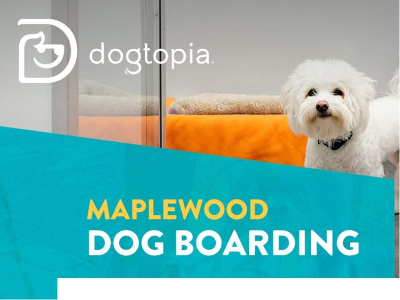 Doggy Day Care, Spa package and more! Dogtopia Maple...