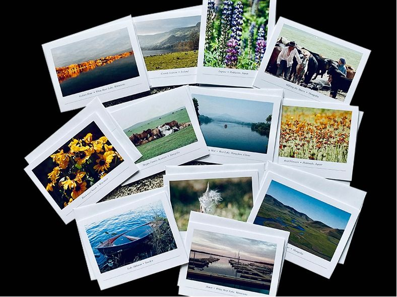 12 Individual Note Cards with unique photos from Mic...
