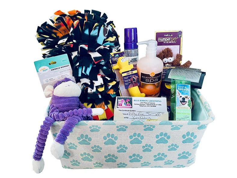 Blue Ribbon Dog Basket and Grooming Gift Certificate
