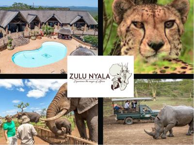 Experience the Magic of Africa at Zulu Nyal...