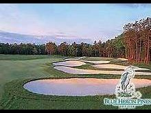 Blue Heron Pines Golf Club - Foursome for G...