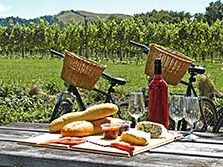 Women's Bike and Wine Tasting Foothills Tour