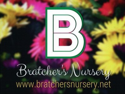 $100 Gift Certificate to Bratchers Nursery and Landscaping