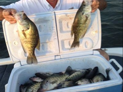1 Day Guided Crappie Fishing Trip for 2 People