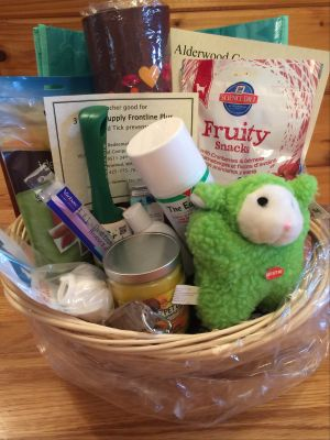 Fabulous Basket of Veterinary Services and Supplies