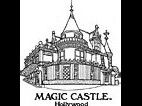 Four VIP Passes and Tour to The Magic Castl...