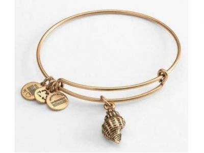 Alex And Ani Conch Bracelet Adjustable Bang...