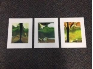 Se t of Three 12x16 Color Matted Photos - G...