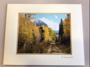 Matted Photo of Crested Butte Mountain Colo...