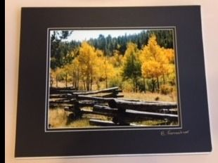 Matted Photo of Caribou Ranch Colorado