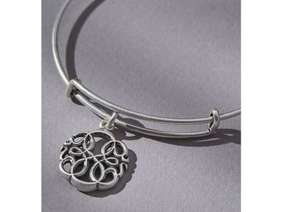 Alex and Ani Path of Life Charm Bracelet