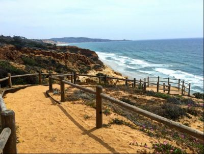 Torrey Pines Hike with Ms Loza